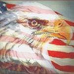 Our Land of the Free Thumbnail